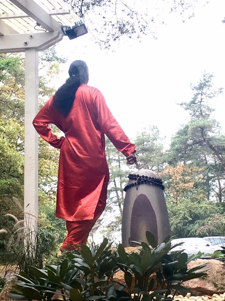 2016-11-25-paramahamsa-vishwananda2